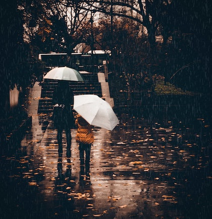 (CreativeWork) Rainy Day With Mum by Joseph Remi d'Argent. photograph. Shop online at Bluethumb.