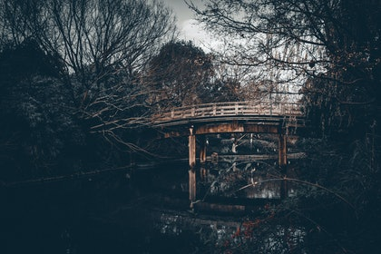 (CreativeWork) FootBridge in Winter by Joseph Remi d'Argent. photograph. Shop online at Bluethumb.
