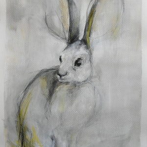 (CreativeWork) Hare (leveret) by Rebecca Hill. mixed-media. Shop online at Bluethumb.