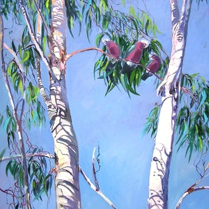 (CreativeWork) Tambo Trees with Resident locals [Galahs ] by Virginia McGowan. #<Filter:0x00005648eba29f60>. Shop online at Bluethumb.