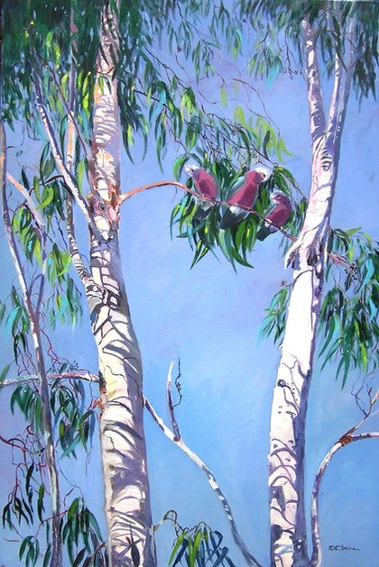 (CreativeWork) Tambo Trees with Resident locals [Galahs ] by Virginia McGowan. oil-painting. Shop online at Bluethumb.