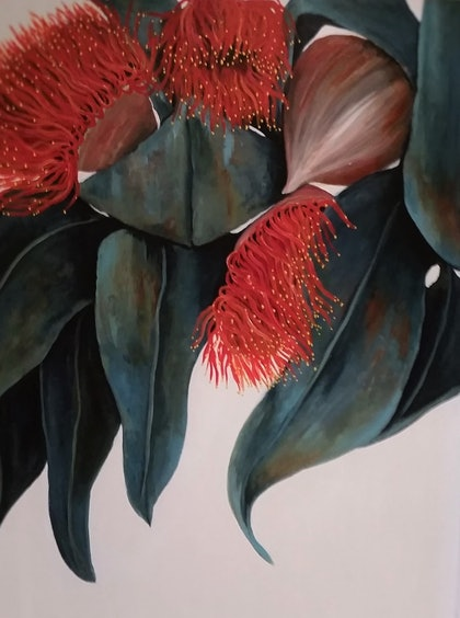 (CreativeWork) Australian Gum Flowers - Simply Red/Orange by Maria Cross. arcylic-painting. Shop online at Bluethumb.
