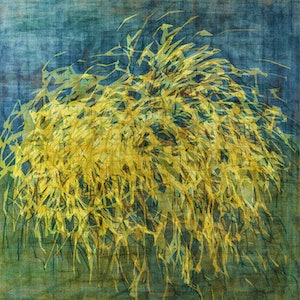 (CreativeWork) 'Wanaka Pampas Grass' Ed. 20 of 25 by George Hall. print. Shop online at Bluethumb.