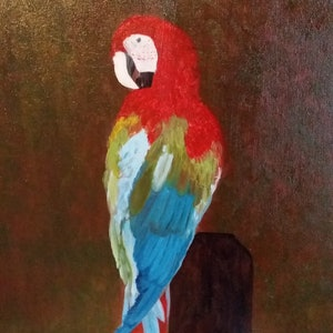 (CreativeWork) Rainbow Macaw parrot by Ayomi Melanie. oil-painting. Shop online at Bluethumb.