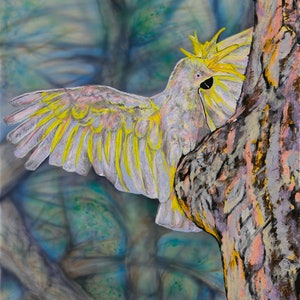 (CreativeWork) Sulphur-crested Cockatoo: Is anyone home? by Susan Willemse. arcylic-painting. Shop online at Bluethumb.