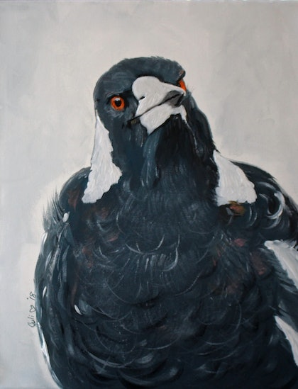 (CreativeWork) Inquisitive Magpie by Julie Hollis. arcylic-painting. Shop online at Bluethumb.