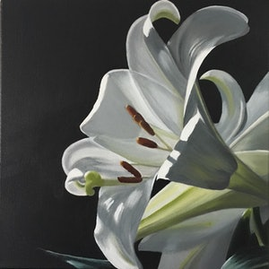 (CreativeWork) LILY #1 by Patricia Hillard. arcylic-painting. Shop online at Bluethumb.