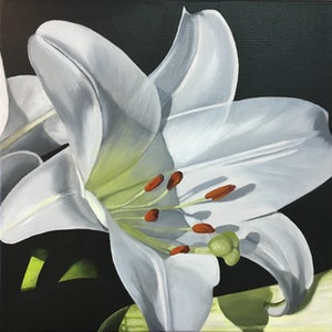 (CreativeWork) LILY #2 by Patricia Hillard. arcylic-painting. Shop online at Bluethumb.