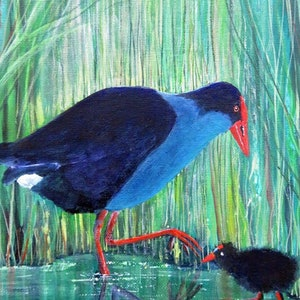 (CreativeWork) Purple Swamp-Hen by Marta Blaszak-Just. arcylic-painting. Shop online at Bluethumb.