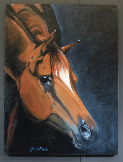 (CreativeWork) MONTANA by Sandy McLean. arcylic-painting. Shop online at Bluethumb.