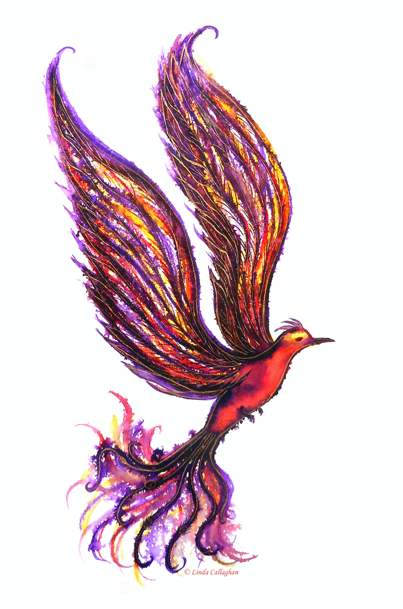(CreativeWork) The Rise of the Phoenix by Linda Callaghan. watercolour. Shop online at Bluethumb.