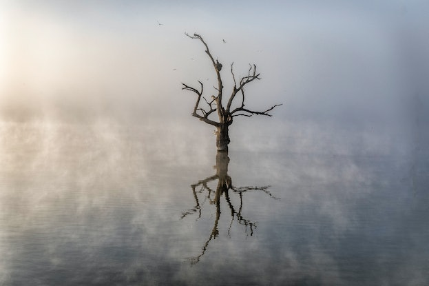 (CreativeWork) Smoke  On The Water Ed. 1 of 50 by Robert Armitage. Photograph. Shop online at Bluethumb.