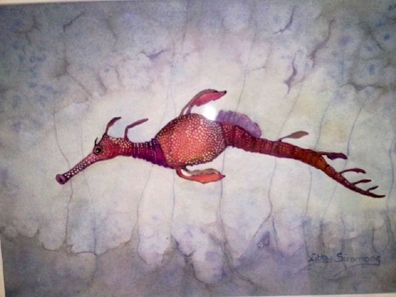 (CreativeWork) Weedy Seadragon and his Babies by Libby Simmons. watercolour. Shop online at Bluethumb.