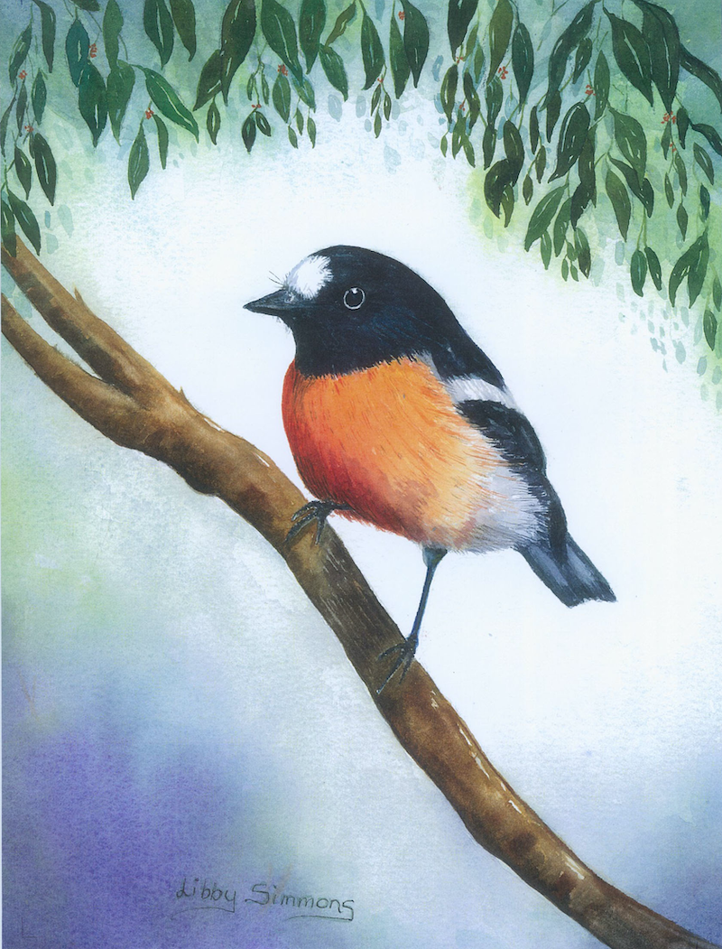 (CreativeWork) Little Scarlet Robin by Libby Simmons. Watercolour Paint. Shop online at Bluethumb.