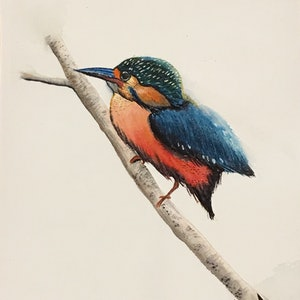 (CreativeWork) Kingfisher on branch by Helena Liu. watercolour. Shop online at Bluethumb.