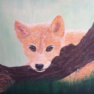 (CreativeWork) Dingo Puppy by Janine H. arcylic-painting. Shop online at Bluethumb.