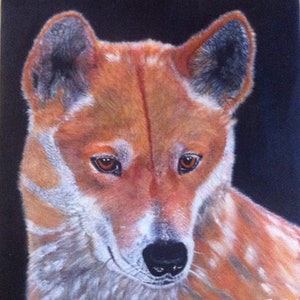 (CreativeWork) Australian Dingo by Janine H. arcylic-painting. Shop online at Bluethumb.