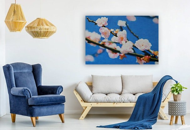 (CreativeWork) Cherry Blossom by Todd Simpson. Acrylic Paint. Shop online at Bluethumb.