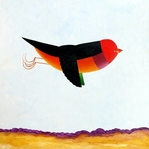 (CreativeWork) Over drylands - Gould Finch  by John Graham. oil-painting. Shop online at Bluethumb.