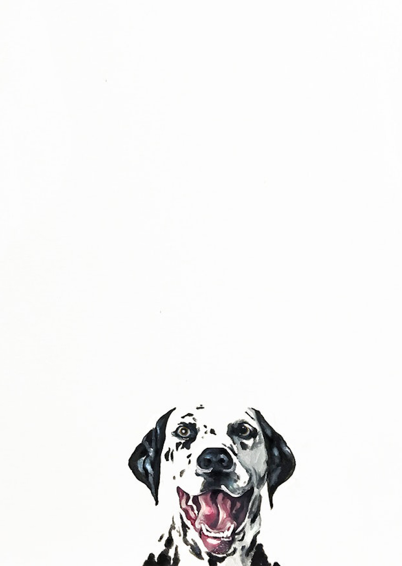 (CreativeWork) Good Boy by Donna Christie. acrylic-painting. Shop online at Bluethumb.