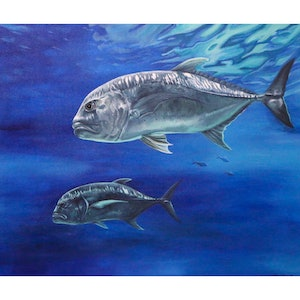 (CreativeWork) Giant Trevally by Caitlin Broderick. arcylic-painting. Shop online at Bluethumb.