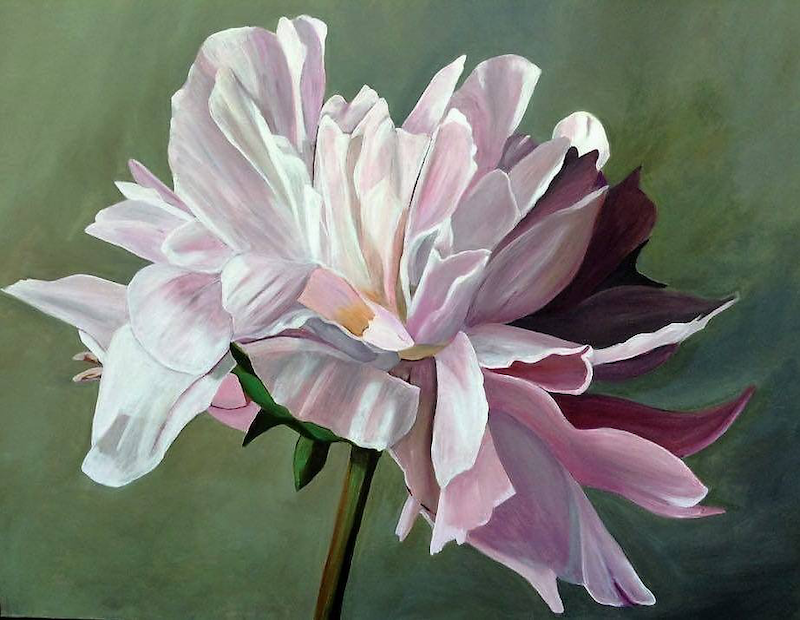 (CreativeWork) Show peony by Sigrid Patterson. arcylic-painting. Shop online at Bluethumb.