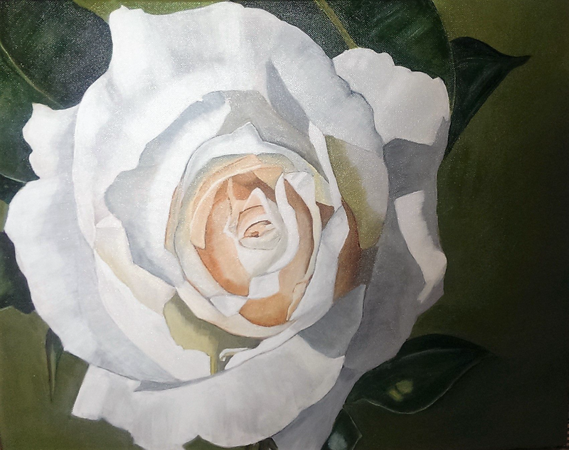 (CreativeWork) Canberra rose by Sigrid Patterson. arcylic-painting. Shop online at Bluethumb.