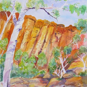 (CreativeWork) Kings Canyon Gumtree . by Virginia McGowan. watercolour. Shop online at Bluethumb.