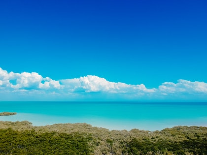 (CreativeWork) Roebuck Bay, Western Australia by Stephanie Tuckfield. photograph. Shop online at Bluethumb.