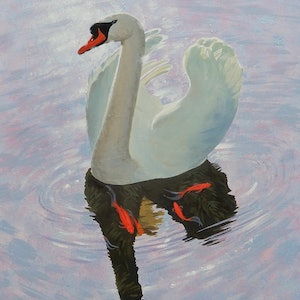(CreativeWork) Swan Lake by Lance Ross. oil-painting. Shop online at Bluethumb.
