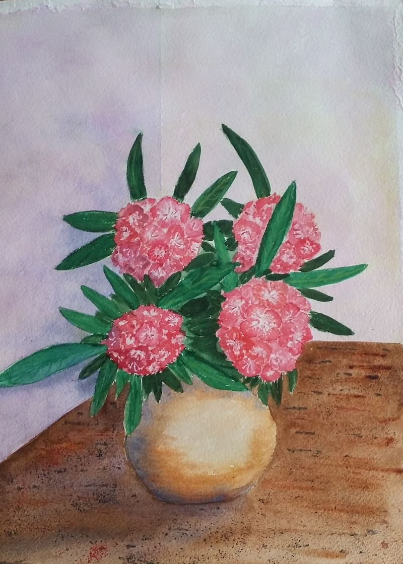 (CreativeWork) Rhododendrons in a Vase by Heather Browne. watercolour. Shop online at Bluethumb.