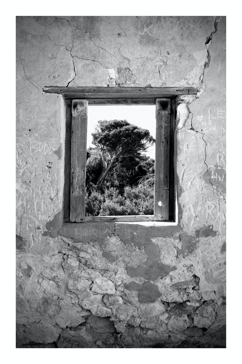 (CreativeWork) THROUGH A WINDOW by Tony Knight. photograph. Shop online at Bluethumb.