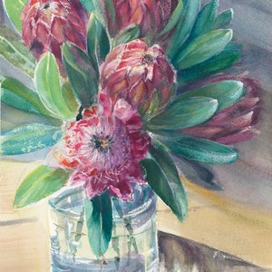 (CreativeWork) Winter Proteas by Anica Amphlett. watercolour. Shop online at Bluethumb.