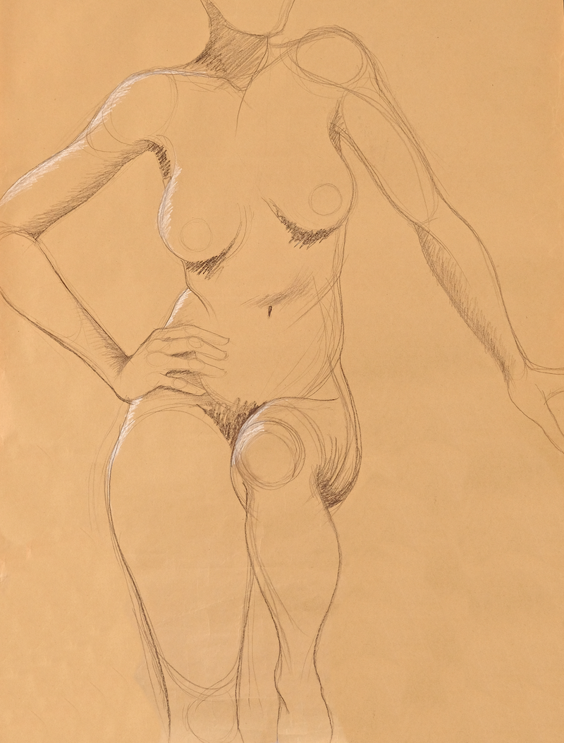 (CreativeWork) Nude on brown paper by Barbara Harkness. Drawings. Shop online at Bluethumb.