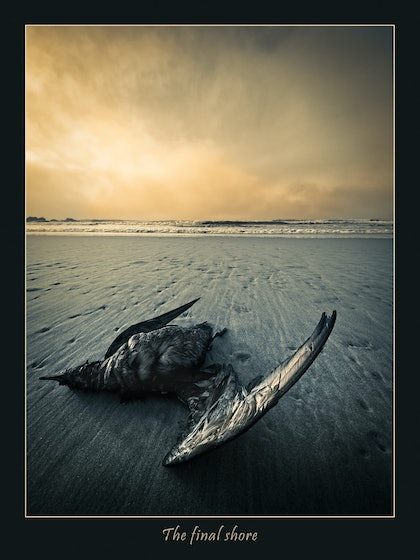 (CreativeWork) The final shore by Rob Smith. photograph. Shop online at Bluethumb.