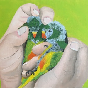 (CreativeWork) Orange-Bellied Parrots by Paul Cox. oil-painting. Shop online at Bluethumb.