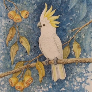 (CreativeWork) Cockatoo Ed. 1 of 100 by Elena Parashko. print. Shop online at Bluethumb.