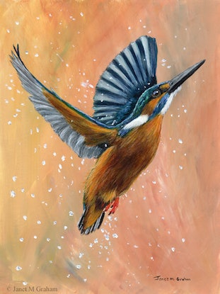 (CreativeWork) Common Kingfisher by Janet Graham. Acrylic Paint. Shop online at Bluethumb.
