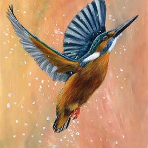 (CreativeWork) Common Kingfisher by Janet Graham. arcylic-painting. Shop online at Bluethumb.