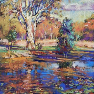 (CreativeWork) Lagoon at Kershaw Gardens by Elena Churilova. other-media. Shop online at Bluethumb.