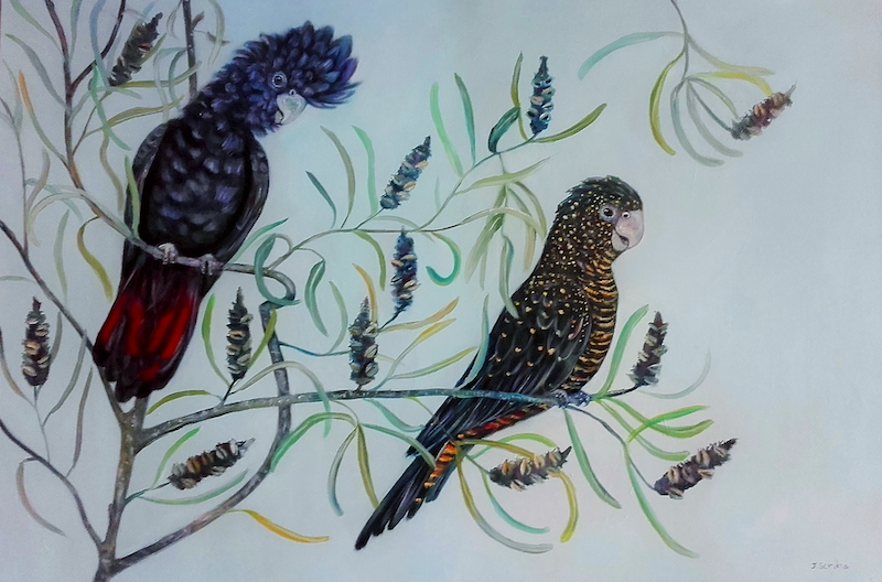 (CreativeWork) Black Cockatoo's by Joanne Scriha. oil-painting. Shop online at Bluethumb.