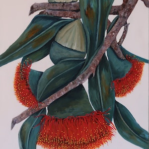 (CreativeWork) Australian Gum Flowers - Intertwined by Maria Cross. arcylic-painting. Shop online at Bluethumb.