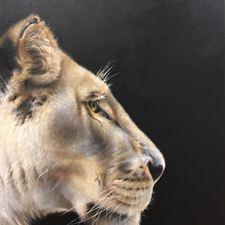 (CreativeWork) Lion by Mahyat Tehrany. Oil Paint. Shop online at Bluethumb.