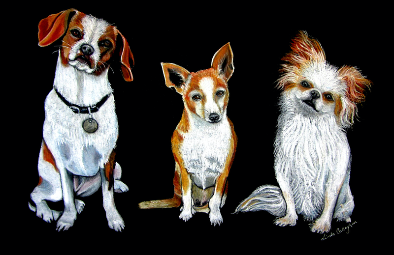 (CreativeWork) Man's Best Friends by Linda Callaghan. drawing. Shop online at Bluethumb.