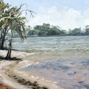(CreativeWork) Egret Point by Corrine Rapley. oil-painting. Shop online at Bluethumb.