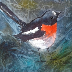 (CreativeWork) SCARLET ROBIN by Anki Wickison. watercolour. Shop online at Bluethumb.