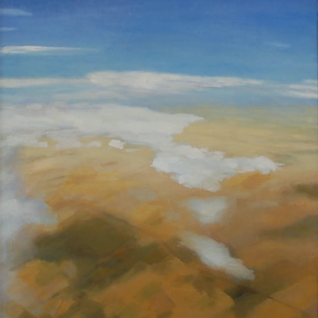 (CreativeWork) Flying over the Murraylands by Trent Chaplin. Oil Paint. Shop online at Bluethumb.