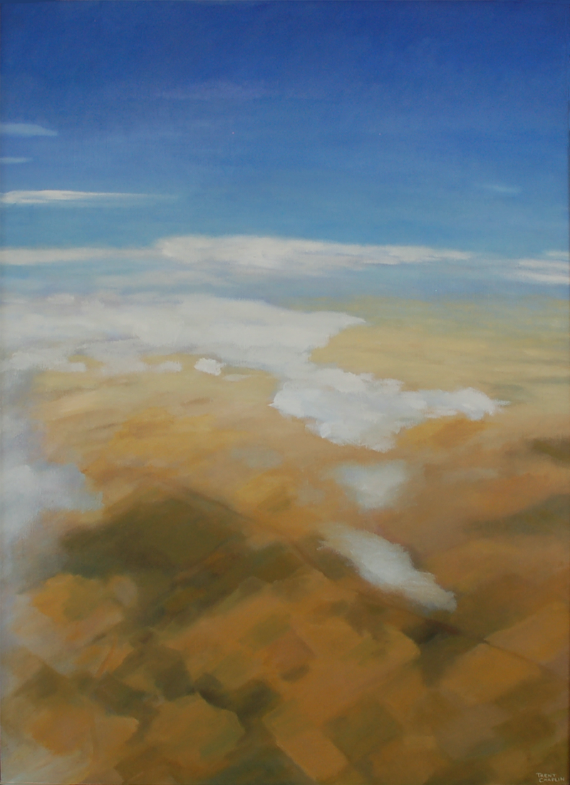 (CreativeWork) Flying over the Murraylands by Trent Chaplin. oil-painting. Shop online at Bluethumb.