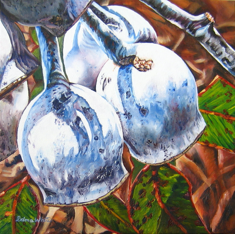 (CreativeWork) Caesia Silver Nuts by Delma White. Oil Paint. Shop online at Bluethumb.