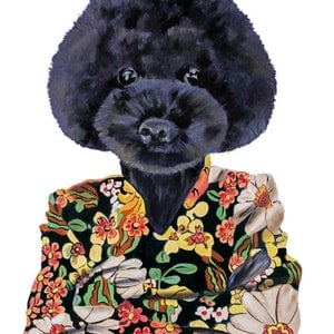 (CreativeWork) Flower Power Poodle (Original Oil )  by Mia Laing. oil-painting. Shop online at Bluethumb.